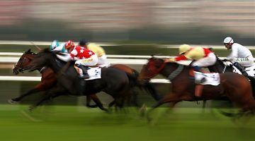 carreras-caballos-5